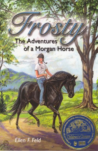 Morgan Stallions