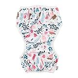 babygoal Baby Swim Diaper One Size Reusable