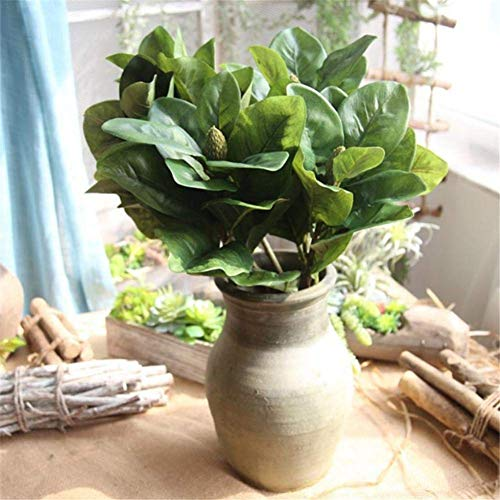 Ficony Artificial Artificial Magnolia Leaves Indoor Plants Wall Home Decor Artificial Plants Microlandscape Artificial Leaves For Home Office Wedding Decoration B Green Buy Online In Aruba At Aruba Desertcart Com Productid 91020373