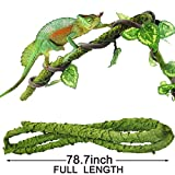 Mokook Jungle Vines Decor for Lizards, Frogs, Snakes and More Reptiles, Aseptic and Adjustable Design, 6.56 Feet Full Length
