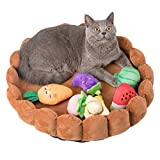 funny supply Pet Bed for Small Animal Fruit Tart Bed with Squeaky Dog Toy Sound Pet Toys