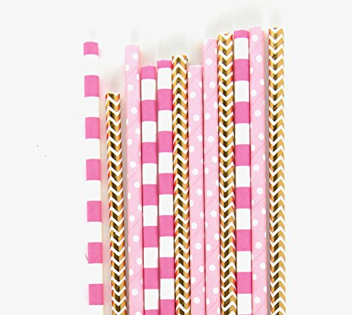 24 Piece Pack Strawberry Sangria Biodegradable Straws