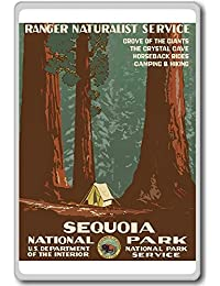 CheckOut 1938, Sequoia National Park, USA - Vintage Travel Fridge Magnet opportunity