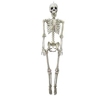 Halloween Poseable Baby Size Skeleton Party Prop Decor Human Anatomy Model US