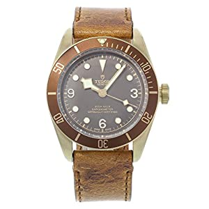 51R6YKWKwiL. SS300  - Tudor Heritage Black Bay Bronze 79250BM Automatic Men's Watch