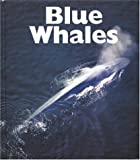 Blue Whales, Mary Ann McDonald, 1567664725