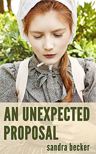 An Unexpected Proposal (Amish Countryside Book 19)