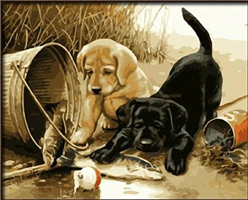 Dorara DIY Oil Painting for Adults Kids Paint By Number Kit Digital Oil Painting Two dogs Play Fun 16x20 Inches