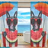 Vantaso Sheer Curtains 78 inch Long French Bulldog Eat Watermelon for Kids Girls Bedroom Living Room Window Decorative 2 Panels