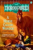 Thoroughbred #01 A Horse Called Wonder