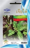Thai Organic Red Holy Basil Seed Sam A Brand (2,000 Seeds).
