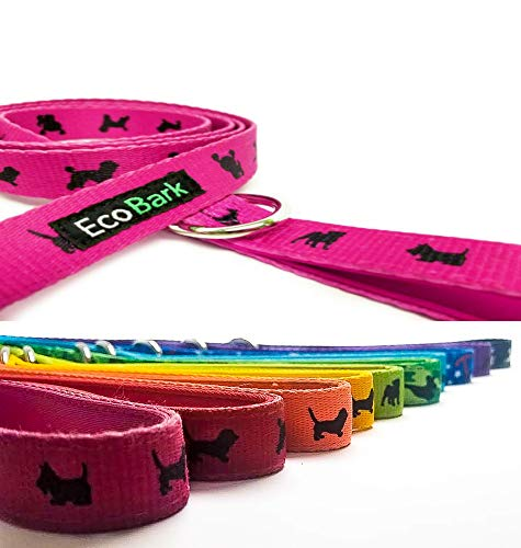 EcoBark Comfort Dog Leash - Gentle Leader Eco-Friendly Padded Durable Heavy Duty Strap, Padded Handle for Pulling, Bright Colors - Leash Lead for Full Control When Dog Training and Walking (Pink)