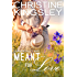 Meant for Love (Willow Valley Book 2)