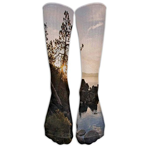 With Clear Sky And Single Pine Tree Rest Peaceful Weekend Photo Comfortable High Socks ()