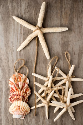 Christmas Tree Ornament Set Starfish and Seashells