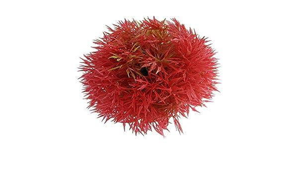 Amazon.com : eDealMax Planta plástico del tanque de pescados de la bola del agua del ornamento, DE 2, 4 pulgadas, Fucsia : Pet Supplies