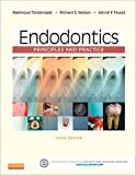 Endodontics - E-Book: Principles and Practice