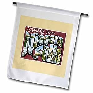 BLN Vintage nosotros ciudades y Estados de las cataratas del Niágara de felicitación postales–Scenic postal reproducción–banderas