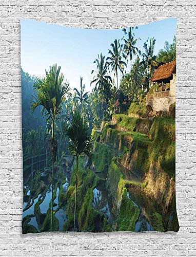 HouseLookHome Balinese Tapestry, Terrace Rice Fields Palm Trees Traditional Farmhouse Morning Sunrise Bali Indonesia, Wall Hanging for Bedroom Living Room Dorm, 60 W X 80 L Inches, Green