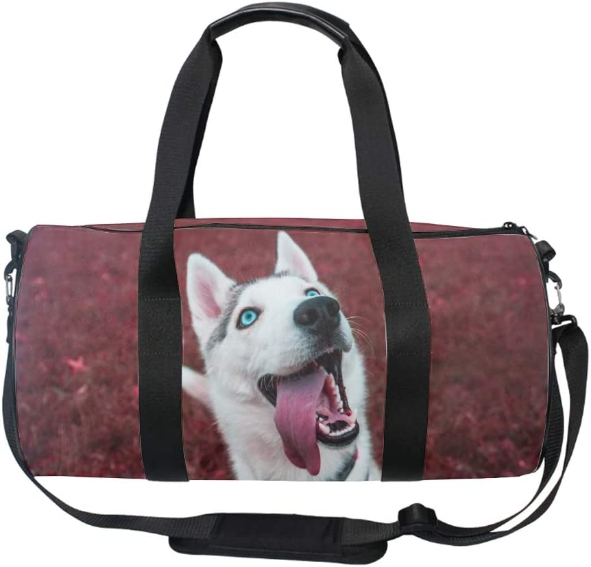 French Bulldog Bench Black Animals Medium Gym Bag with Shoe Compartment Men Duffel Bag