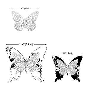 Butterfly Clips 2