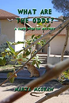 What Are the Odds?: A Sandi Webster Mystery (The Sandi