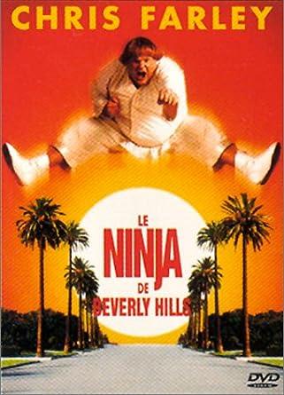 Le Ninja de Beverly Hills [Francia] [DVD]: Amazon.es: Chris ...
