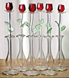 Banberry Designs Vases - Best Reviews Guide