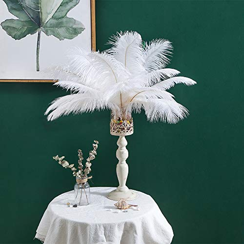 12-14 inches (30~35cm) Real Natural Ostrich Feathers Great Decorations for Home Party Wedding Centerpieces White (12-14