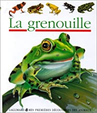 La grenouille par Daniel Moignot