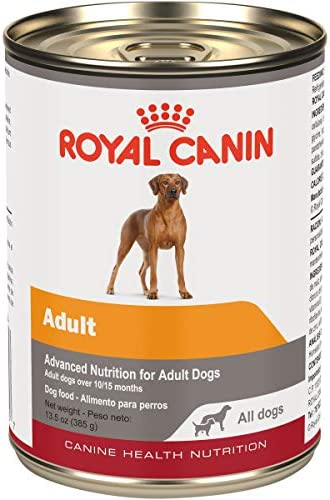 Royal Canin Canine Health Nutrition Adult in Gel Canned Dog Food