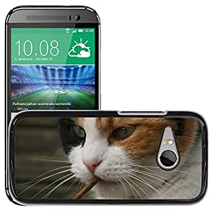 Super Stella Slim PC Hard Case Cover Skin Armor Shell Protection // M00105187 Cat Cats Animal Garden Weird Sweet // HTC One Mini 2 / M8 MINI / (Not Fits M8)