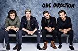 One Direction- Bench Poster 34 x 22in