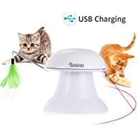 Dadypet 2 in 1 Automatic Non-Handheld Cat Chaser Toy