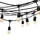 Fulelight LED Outdoor Commercial String Lights, 24 Feet-8 Sockets, 2W LED Bulbs Included Heavy-duty Weatherproof Vintage Edison String Lights for Patio, Backyard, Wedding