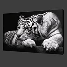 New Modern Wildlife Wall Painting Animal Black and White Tiger Poster Paint on Canvas Prints Home Decorative Art Picture (12x16inchx1pcs(30x40cmx1pcs))
