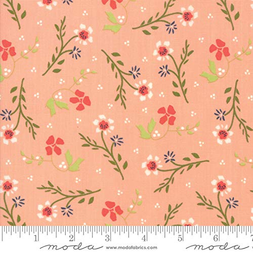 Walkabout Moda Quilt Fabric Floral Dandelions Peachy Style 37562/15
