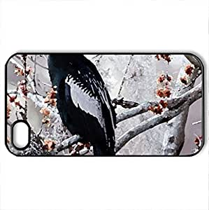 ANHINGA - Case Cover for iPhone 4 and 4s (Birds Series, Watercolor style, Black)
