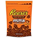 REESE'S Peanut Butter Cup Miniatures (8-Ounce Pouches, Pack of 4)