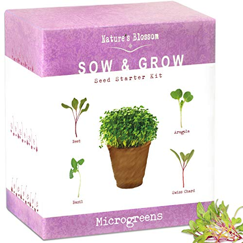 - The Beginner's Kit to Grow 4 Types of Microgreen Sprouts from Seed. 10 Day Results. Plant an Organic Indoor Vegetable Garden with Ease. Sprouting Growing Set W/Arugula Seeds, Basil, Beets & Chards