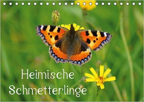 Tischkalender immerwährend DIN A5 quer ... Tischkalender, 14 Seiten Kalender Dec 09, 2013 kattobello : Kunterbunte Tagfalter in der Natur k.A. Heimische Schmetterlinge // Geburtstagskalender
