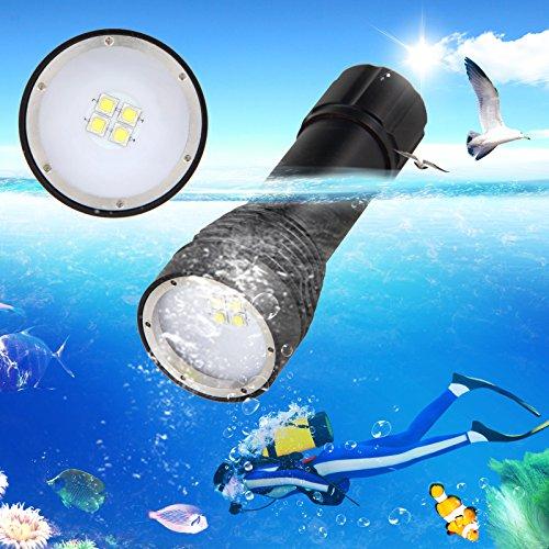 Brightest Led Dive Light in Florida - 6