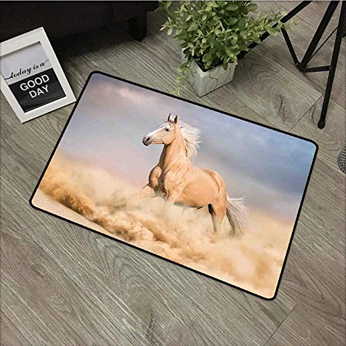 Fakgod Welcome Doormat Horses Palomino Horse in Sand Desert with Long Blond Male Hair Power Wild Animal Easy Clean Rugs 31