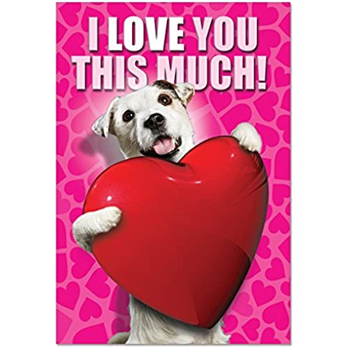 NobleWorks C1648VDG Love You This Much Dog Funny Valentine's Day Unique Greeting Card, 5 x 7 Sales