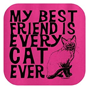 My Best Friend is Every Cat Ever Ladies T-Shirt Large Heliconia