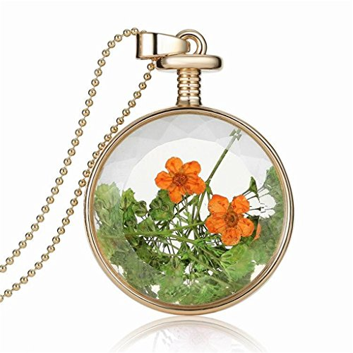 [Dry Orange Flower Herbarium In Transparent Round Box Memory Locket Necklace For Women] (Galadriel Costume Design)