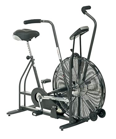 Schwinn Airdyne Ad4 Upright Exercise Bike Sports