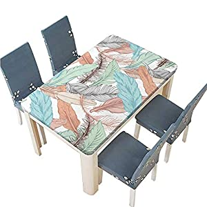 PINAFORE Polyester Tablecloth Colorful Ethnic Seamless Pattern with Feathers Vector Illustration Hand Drawn Vector Spillproof Tablecloth W25.5 x L65 INCH (Elastic Edge) 12
