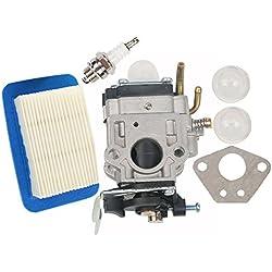 HIFROM Carburetor with Gasket Air Filter Spark Plug Replaces Walbro WYK-192 for Echo PB-755 PB-755H PB-755T PB-755SH PB-755ST PB-751 PB-751H Backpack Blower