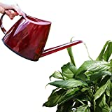 Buyoung Indooor Watering Can for Plants, Gardening, Home Decor, 47oz